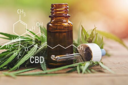 Cannabis herb and leaves with oil extracts in jars. medical concept - formula CBD Stok Fotoğraf