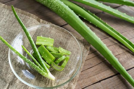 Aloe Vera very useful herbal medicine for skin treatment and use in spa for skin care. herb in nature Stok Fotoğraf - 130721656