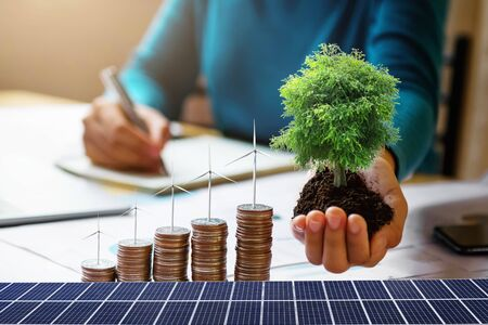 businesswoman holding tree with turbine on coins and solar panel. concept saving energy and finance accounting