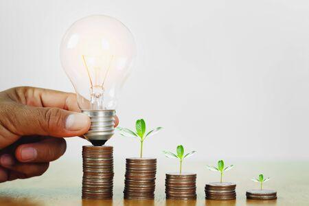 Hand, die Glühbirne mit Pflanzenwachstumsschritt auf Geld hält. Konzept Finanzbuchhaltung und Energiesparen Standard-Bild