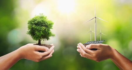 hand holding tree with turbine and solar panel. concept eco energy and clean power