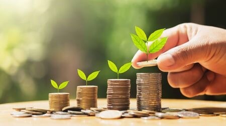 hand putting coins on stack with plant growing on money . concept finance and accounting Stok Fotoğraf - 132068531