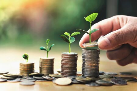 hand putting coins on stack with plant growing on money . concept finance and accounting Stok Fotoğraf - 132068616