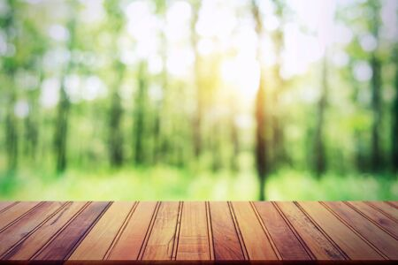 Mesa de madera vacía sobre fondo de bosque borroso para producto de diseño Foto de archivo