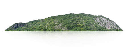 rock mountain with forest isolate on white background Stockfoto