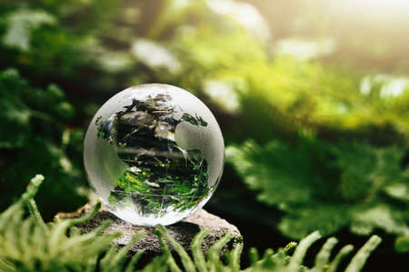 crystal globe glass resting on stone with green leaf and sunshine in nature forset. eco  environment concept