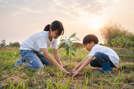 children helping planting tree in garden for save world. eco environment concept