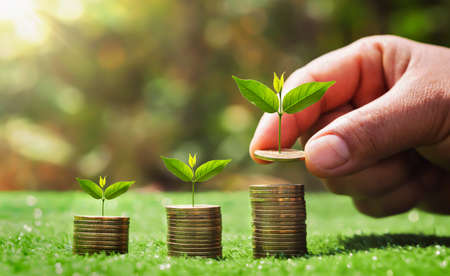 saving money hand putting coins on stack with small tree growing. concept finance and accounting Standard-Bild