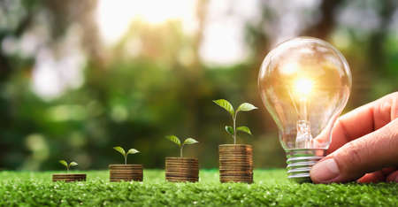 hand holding light bulb on green grass with young plant growing on coins stack. saving power energy and save money