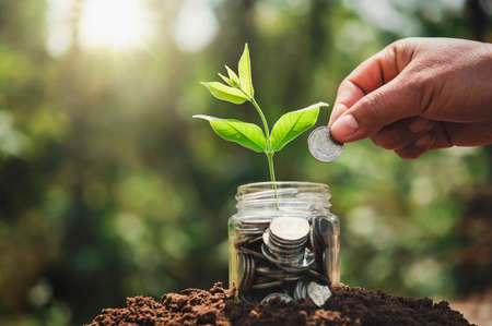 hand putting coins into jug glass with plant growing on money. concept saving finance and accounting Standard-Bild