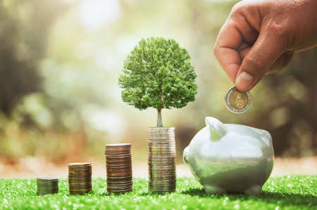 hand putting coins in to piggybank with money stack and plant growing. concept finance and accounting