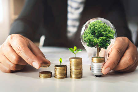 businessman holding lightbulb with tree grow on coins. concept saving energy and finance accounting