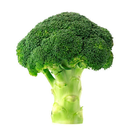 fresh broccoli isolate on white background Standard-Bild