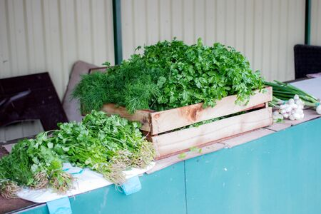 Selling fresh herbs in a market. Parsley, dill and green onion  in a box outdoors in a greenery shop. Farming and small green business concept