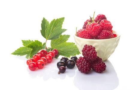 Un grupo de bayas frescas. Grosellas rojas y negras con hojas verdes, frambuesas en un recipiente y loganberry aislado sobre fondo blanco.