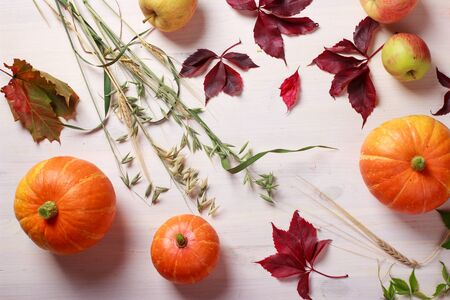 Thanksgiving food background with pumpkins, apples, wheat, oats and autumn leaves on white wooden table