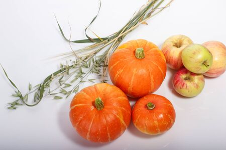 Thanksgiving food background with pumpkins, apples, wheat, oats and autumn leaves on white background Archivio Fotografico