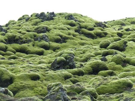 lava field: Amazing Green Mossy Lava Field in South Iceland, Background, Pattern