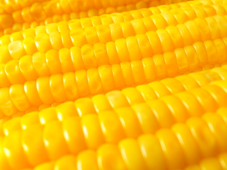 sweet corn: Close-up of Boiled Orange Yellow Sweet Corn, Background, Texture