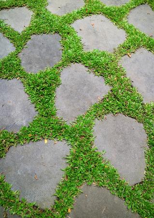 Lebendige grüne Gräser glühen zwischen Garten Trittsteine Standard-Bild - 83289494