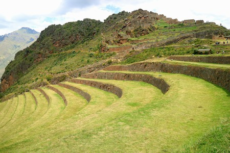 Many people visiting the Inca agricultural terraces and the ancient ruins at Pisac Archaeological site, Sacred Valley of Cusco region, Peru