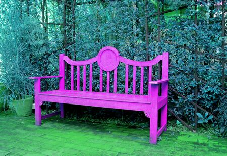 Pop Art Style Vivid Pink Wooden Bench in Turquoise Blue Colored Garden