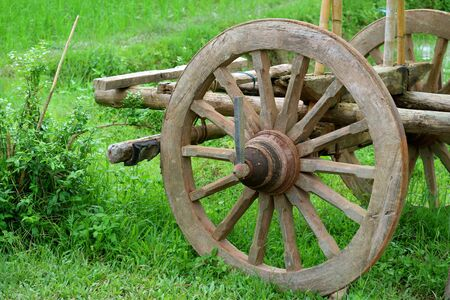 The wooden wheel of an old bullock cart in the green field Stock Photo