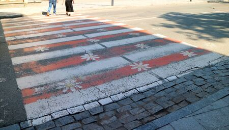 Red and White Stripes with Flowers Painted Crosswalk on the Street of Downtown Kutaisi, Georgia