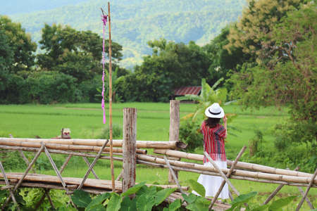 Woman enjoy the beautiful view of vibrant green paddy field from a bamboo bridge Stok Fotoğraf
