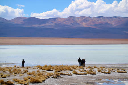 Silhouette of Group of Visitors at Laguna Hedionda with Flock of Flamingos Grazing in Afar, Bolivian Altiplano, Potosi, Bolivia
