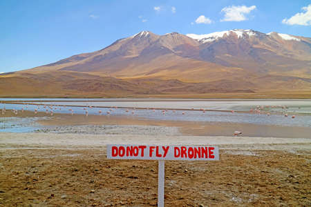 Warning Signpost at Lake Hedionda in Bolivian Altiplano with a Flamboyance of Pink Flamingos Grazing, Potosi Department of Bolivia