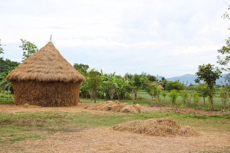 a house with a straw: straw house , village hut
