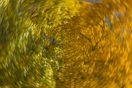 Russian seasons - Autumn dance and a riot of colors of wood leaves (view 4) Stock Photo