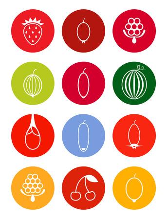 honeysuckle: Berries icon set in bright tones