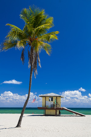 Beach with lifeguard and palm tree