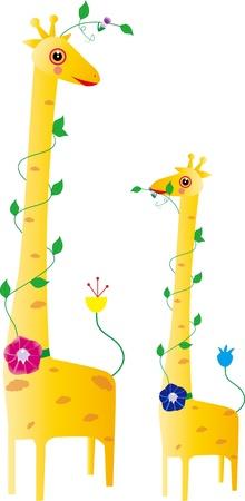 illustration a couple of giraffes