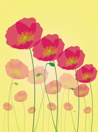 Row of poppy flowers isolated on yellow background Vector