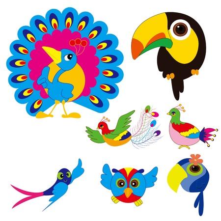 birds set  Phoenix, Swallow, piano birds, peacocks and parrots Vector