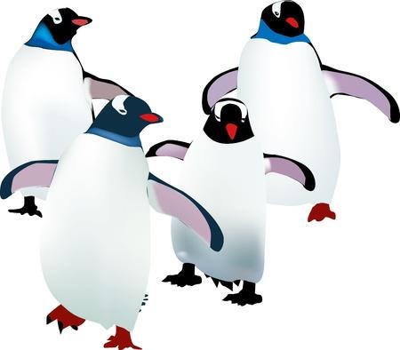 четыре маленькие пингвины учатся ходить Иллюстрация