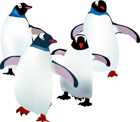 four little penguins learning to walk Stock Vector - 16306762