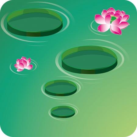pad  lily: Lotus flowers Illustration