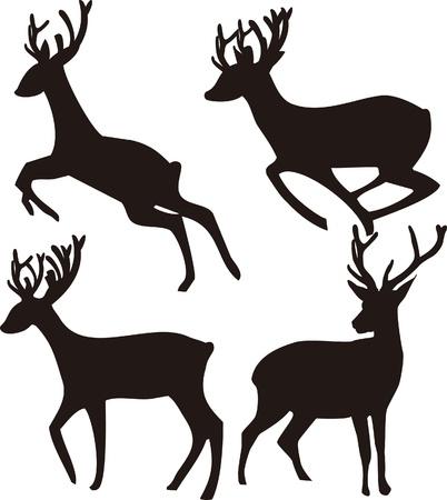 deers: Ciervos Silueta sobre fondo blanco
