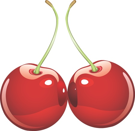 two isolated red cherries  Stock Vector - 17006038
