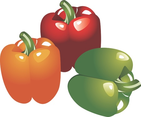 Green, yellow and red chili  Illustration