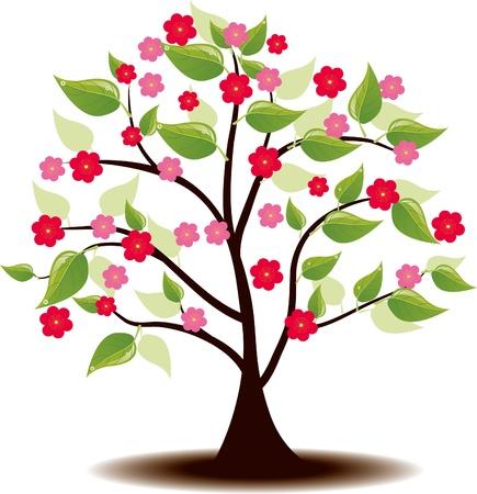 Summer tree Ilex flowers Stock Vector - 17090406