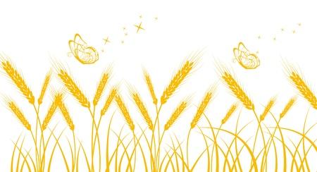 processed grains: Golden wheat Illustration