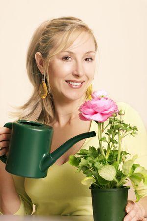 flowering plant: Gardener entusiasta con una pianta a fiore rosa piuttosto di fioriture e di gemme.  Archivio Fotografico