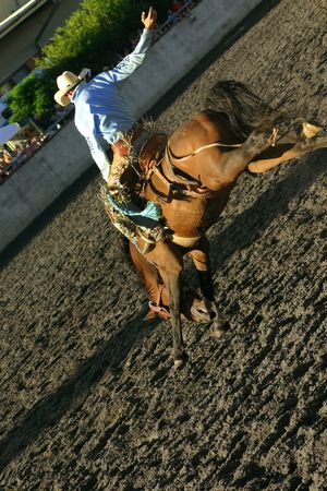 chestnut male: a rider on a wild adrenaline rush, riding a bucking horse at a rodeo