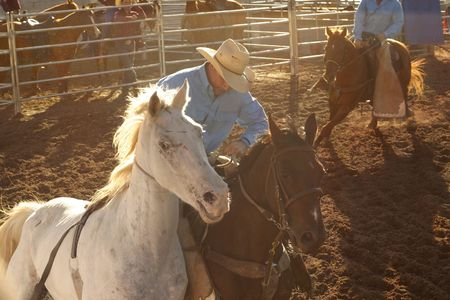 arena rodeo: Stockman at a rodeo rides in the dusty dirt