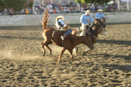 stockman: a rider falls from a bucking horse.  Visible motion